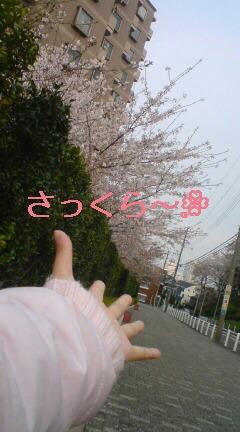 プロレス〜☆